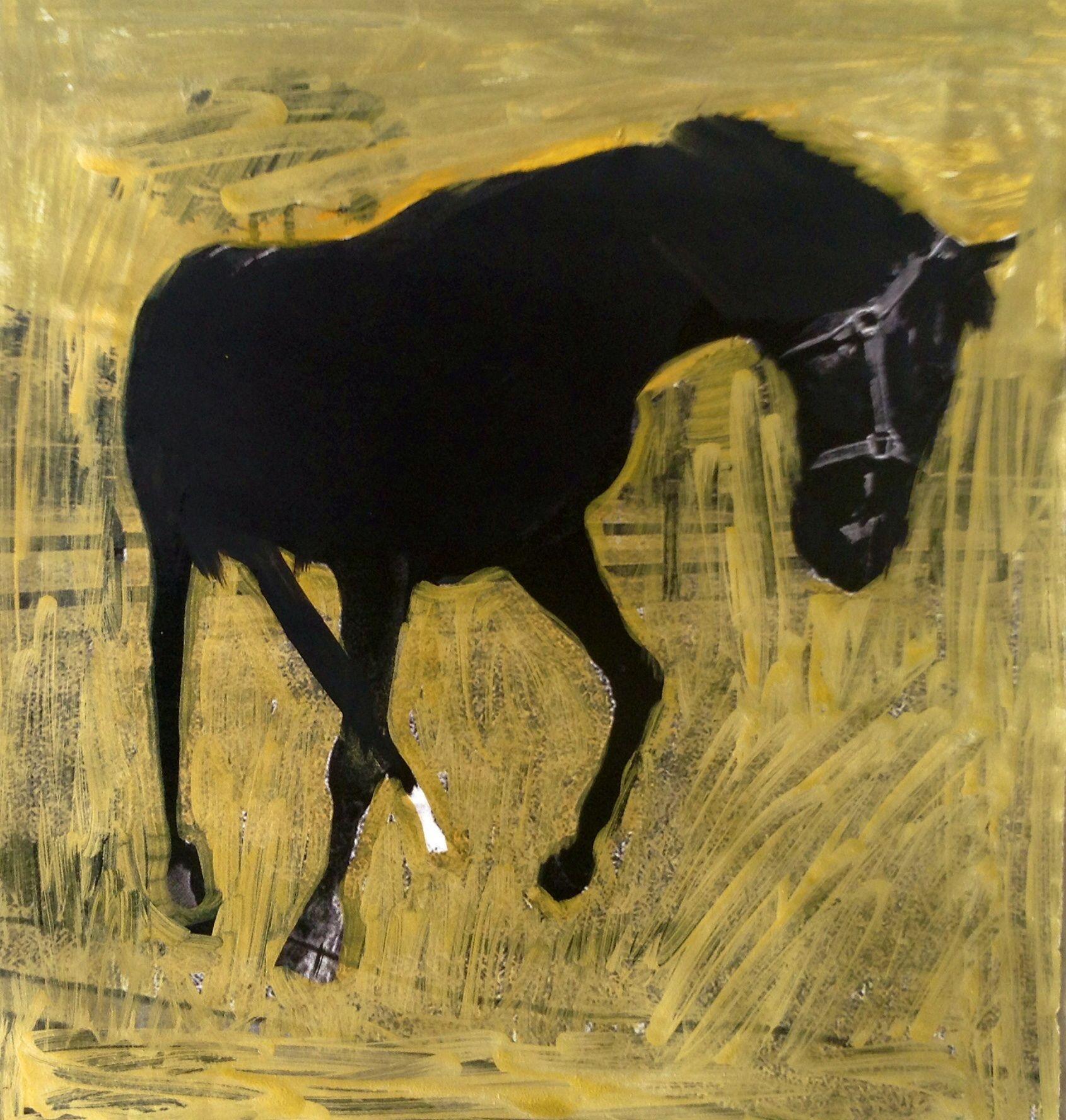 Marina Godoy         2014 :   THE YEAR OF THE HORSE