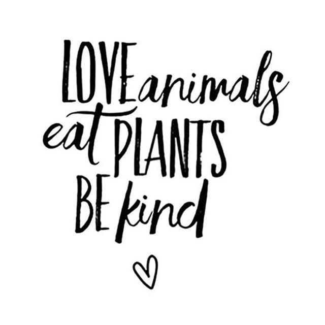 LOVE animals, eat PLANTS, BE kind! | Zitat, Spruch & Quote für Veganismus, pflanzlich vollwertige & vegane Ernährung. Gegen Massentierhaltung. Veganer Lifestyle. #vegetarianquotes