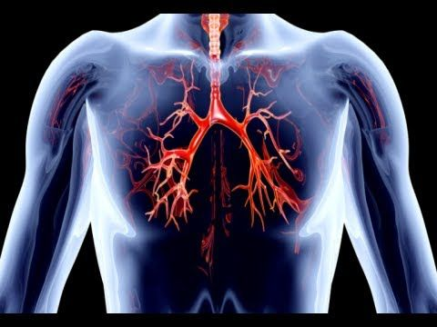 HOW TO REDUCE CALCIUM BUILDUP & HEART IN ARTERIES & BLOOD