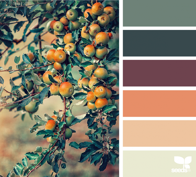 Color Nature images