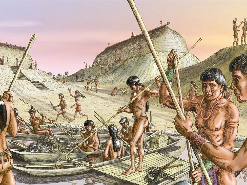 Calusa Indians dominated our coast in 1500   Native america, History,  Native american tribes