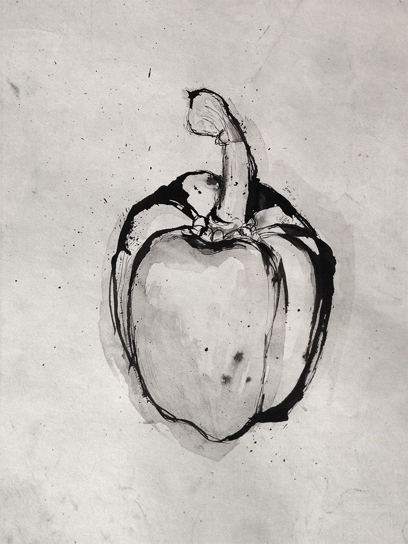 Simple still life drawings of food art in bw drawings still