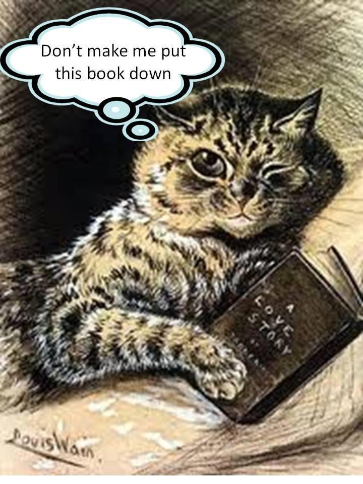 Donu0027t Make Me Put This Book Down ; ). Book QuotesReading BooksReading  QuotesReading LibraryBig ...