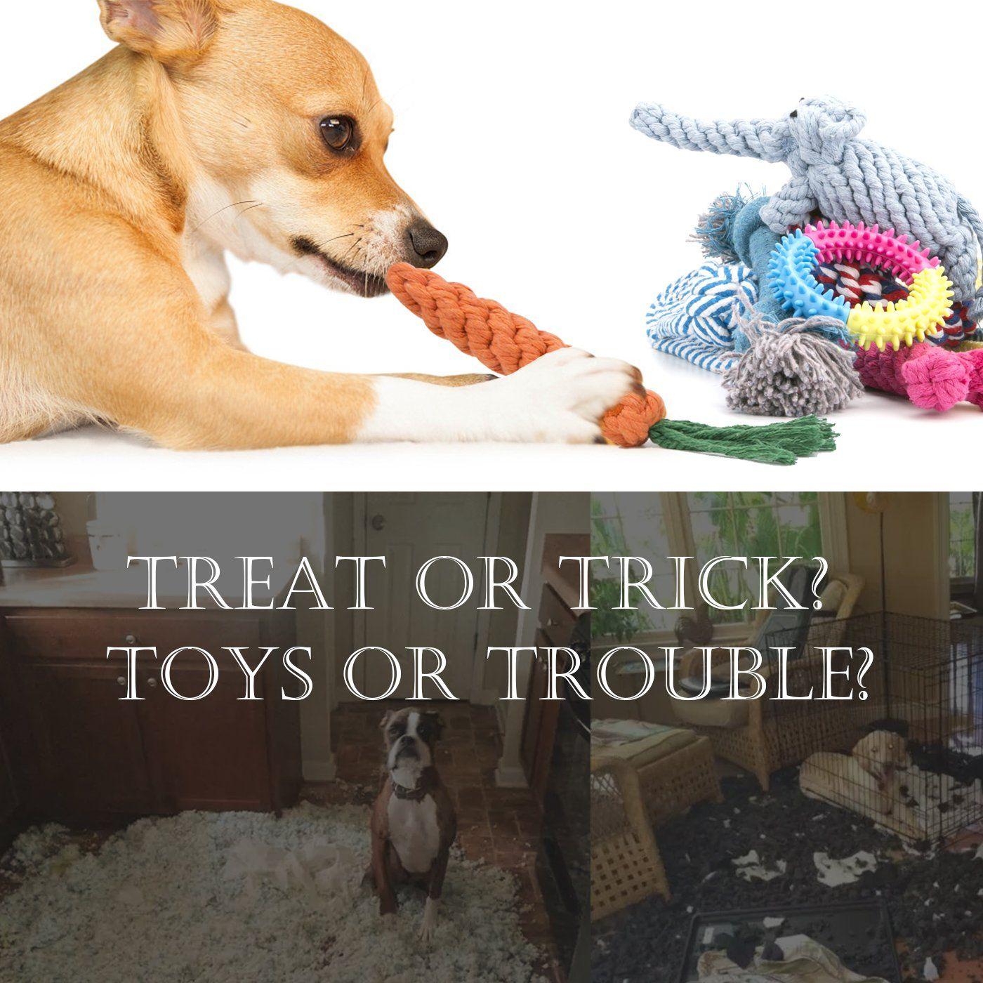 Dog Chew Toys 10 Set Jekeno Dog Bones Ball Rope For Puppy Small