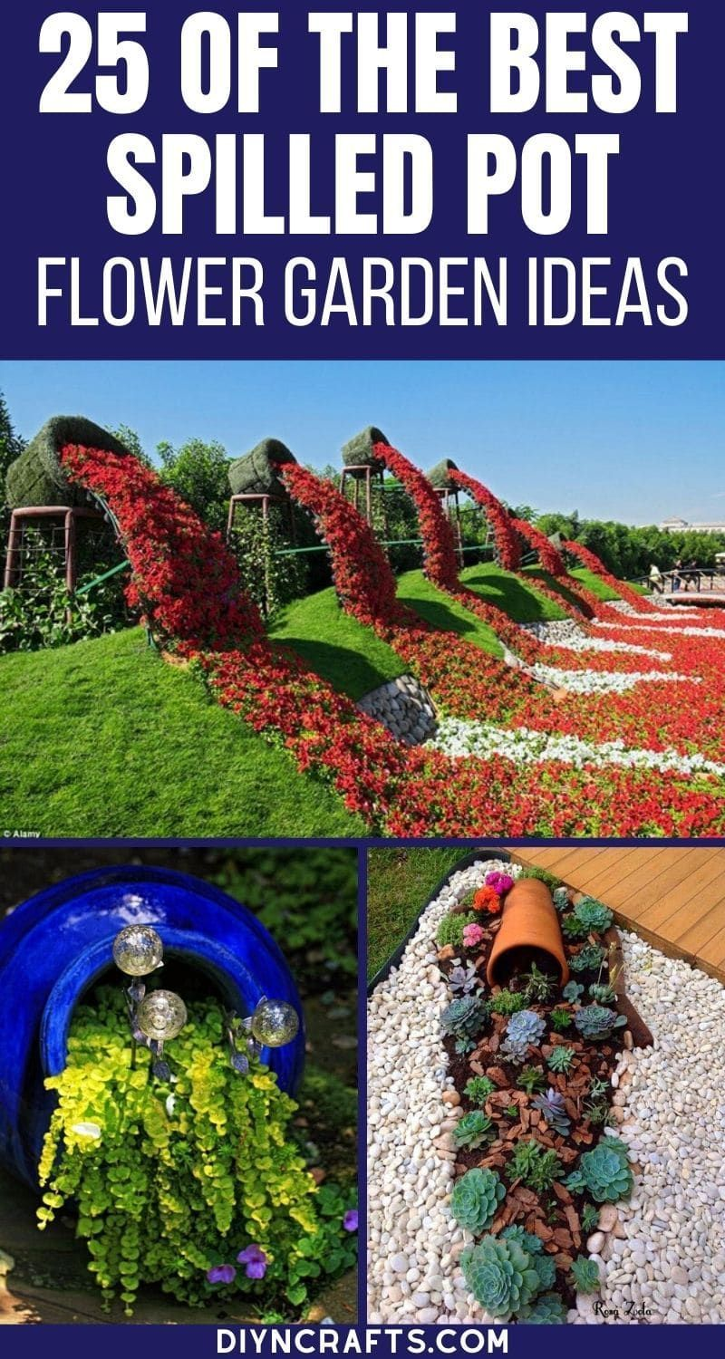Photo of 25 Stunning Spilled Flower Pot Ideas for Your Lawn and Garden