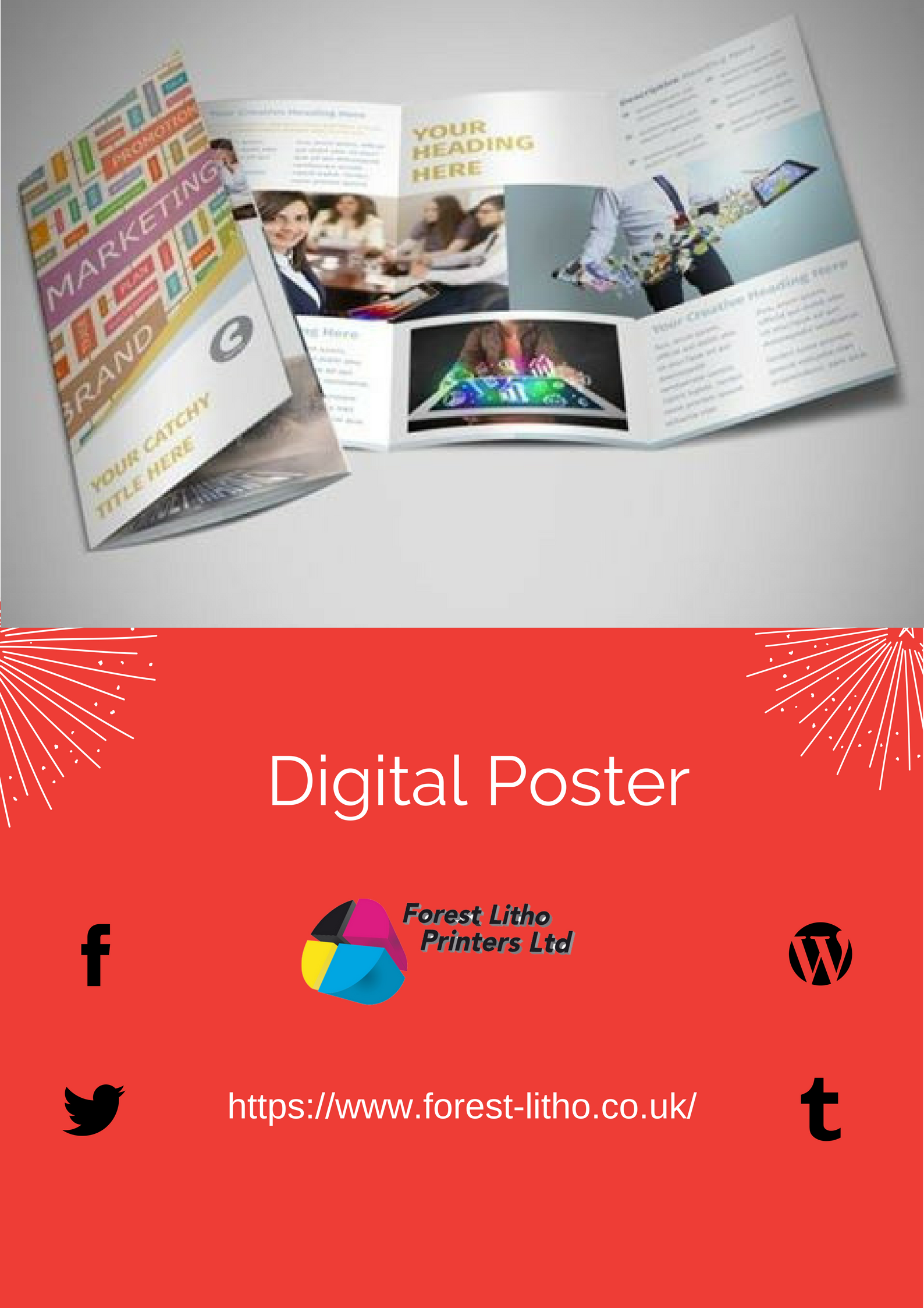 Get Large Size Poster Printed On 170gsm Silk Material Delivered Rolled Up In A Tube By Forest Litho Printers Uk Order Online No Poster Prints Poster Posters Uk