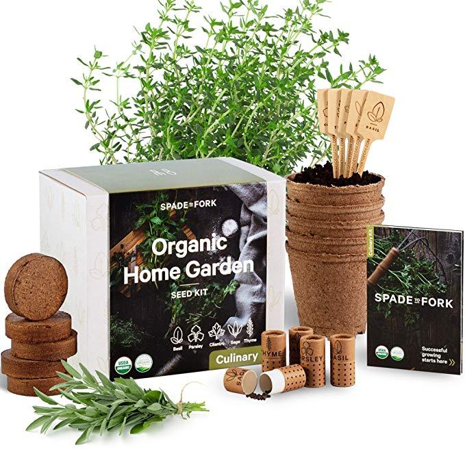 Amazon Com Indoor Herb Garden Starter Kit Certified 100 Usda