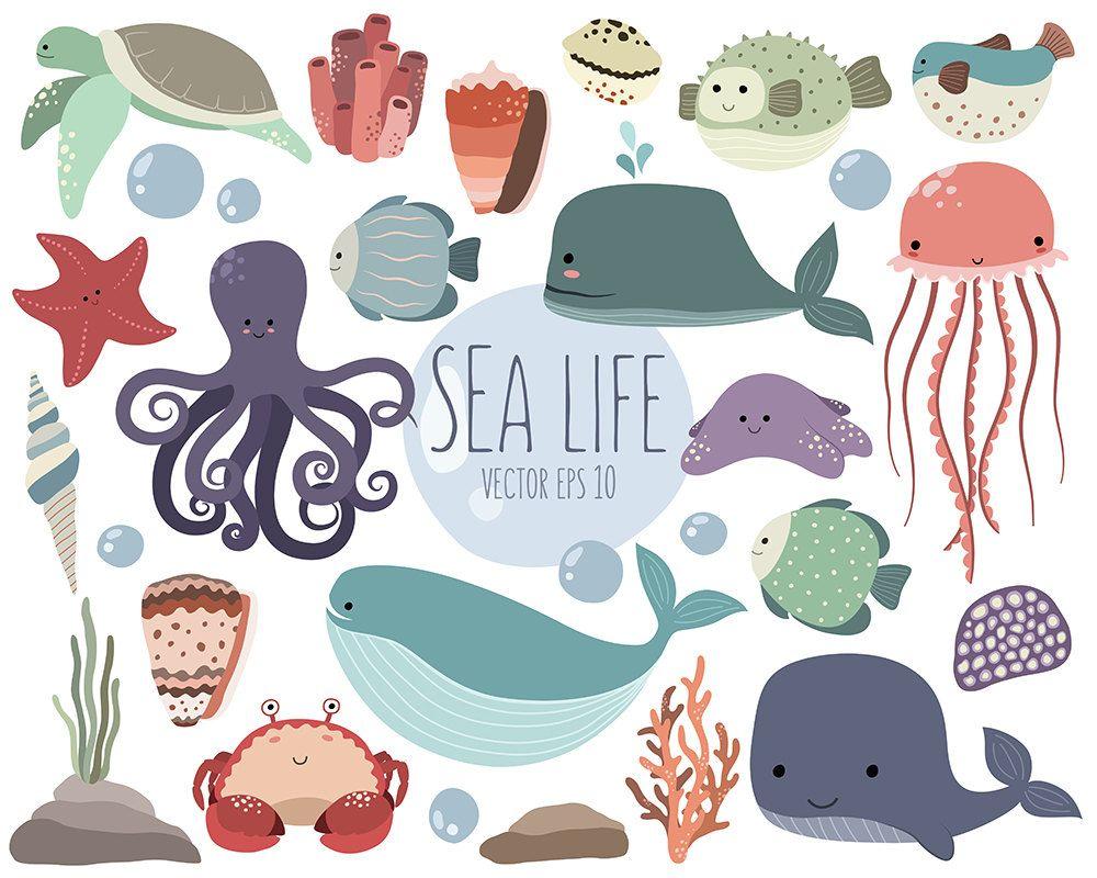 Sea Life Clipart 25 Cute Ocean Animals Clip Art Set Quality Vector Png Jpg 300 Dpi Summer Clipart Adorable Beach Art Sea Life Clipart Clip Art Ocean Animals