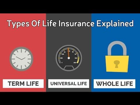 Types Of Life Insurance Explained (With images ...