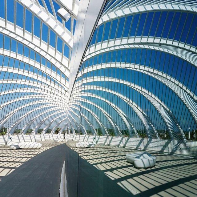 Florida Polytechnic University designed by Santiago Calatrava in Lakeland, Florida⠀  ⠀  ⠀  #a17con #calatrava #architexture⠀  ⠀  ⠀  ⠀