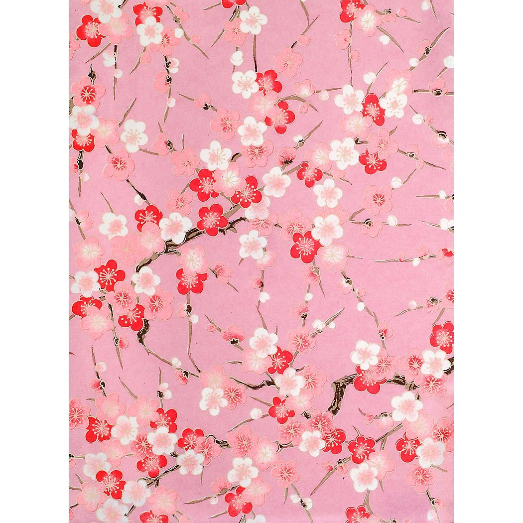 Japanese kozo wrapping paper in plum blossom and branch for Japanese wrapping