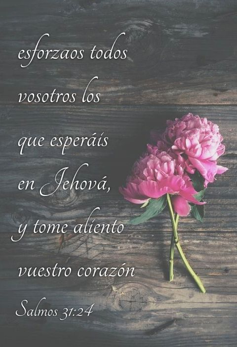 Salmos 31 24 Esforzaos Todos Vosotros Los Que Esperáis En Jehová Y Tome Aliento Vuestro Corazón Bíblicos Versículos Bíblicos Palabras De Bendicion