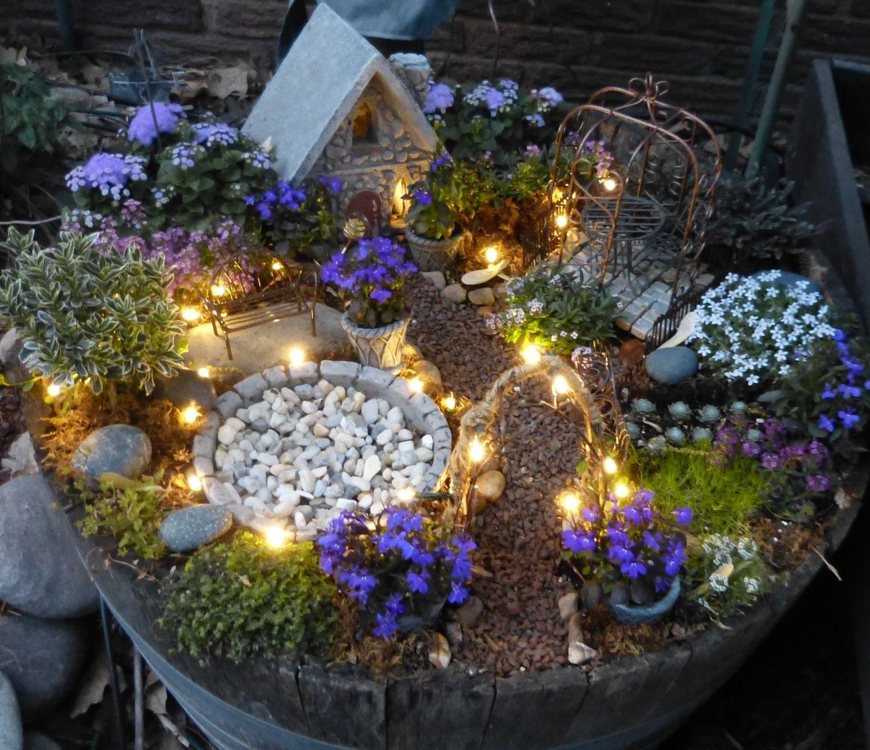 Fairy Garden With Solar Twinkle Lights. Plants Include Babyu0027s Tears,  Ageratum, Allysum,
