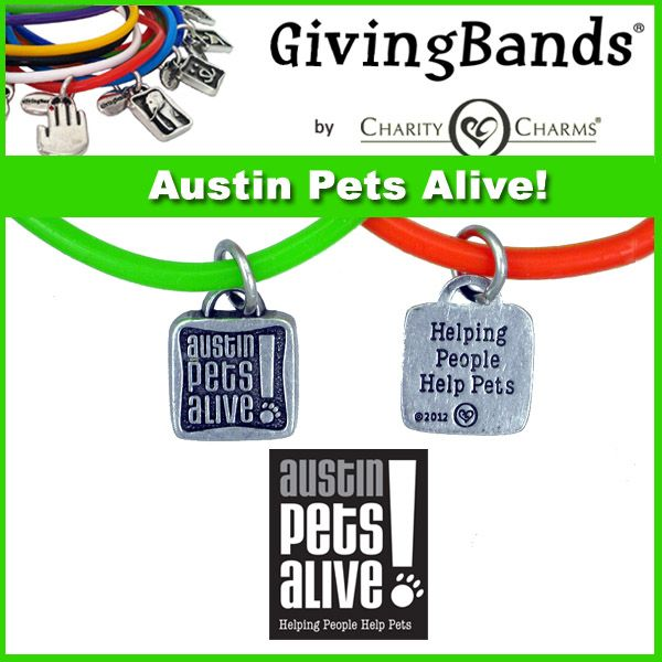 Austin Pets Alive GivingBands Pets, Animal charities