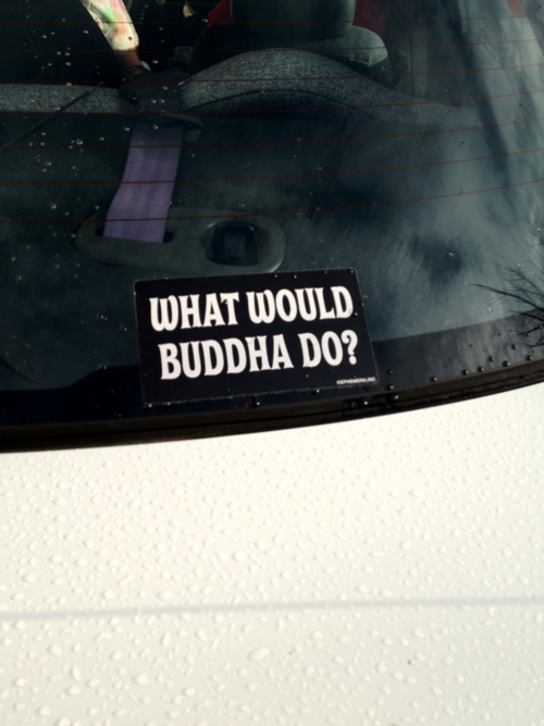 Love this Bumpersticker need to get.