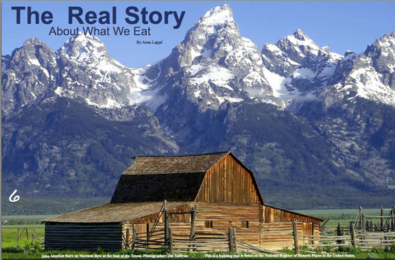 The Real Story written by Anna Lappe for Our USA Magazine