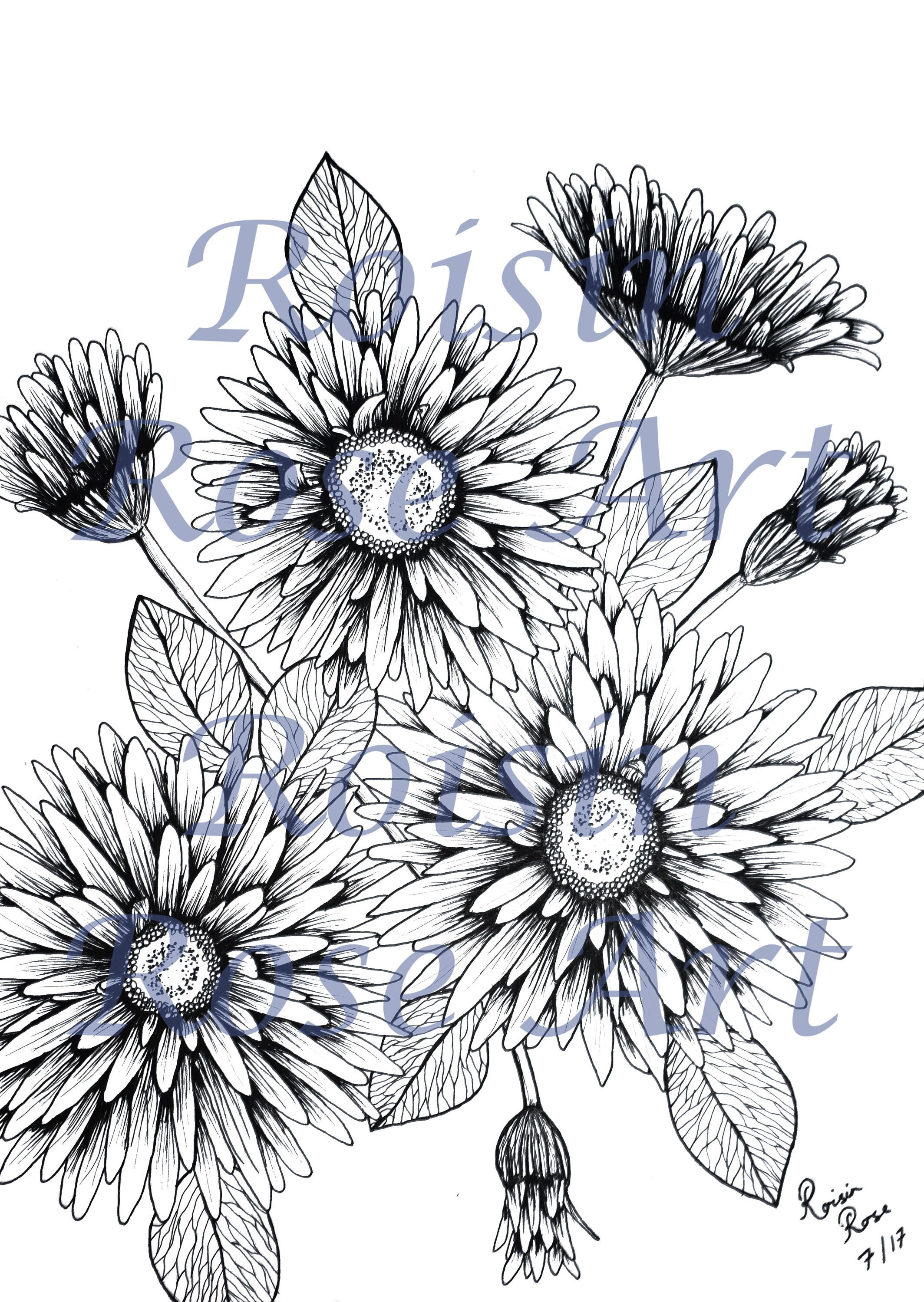 Floral colouring page instant download by roisinroseart on etsy