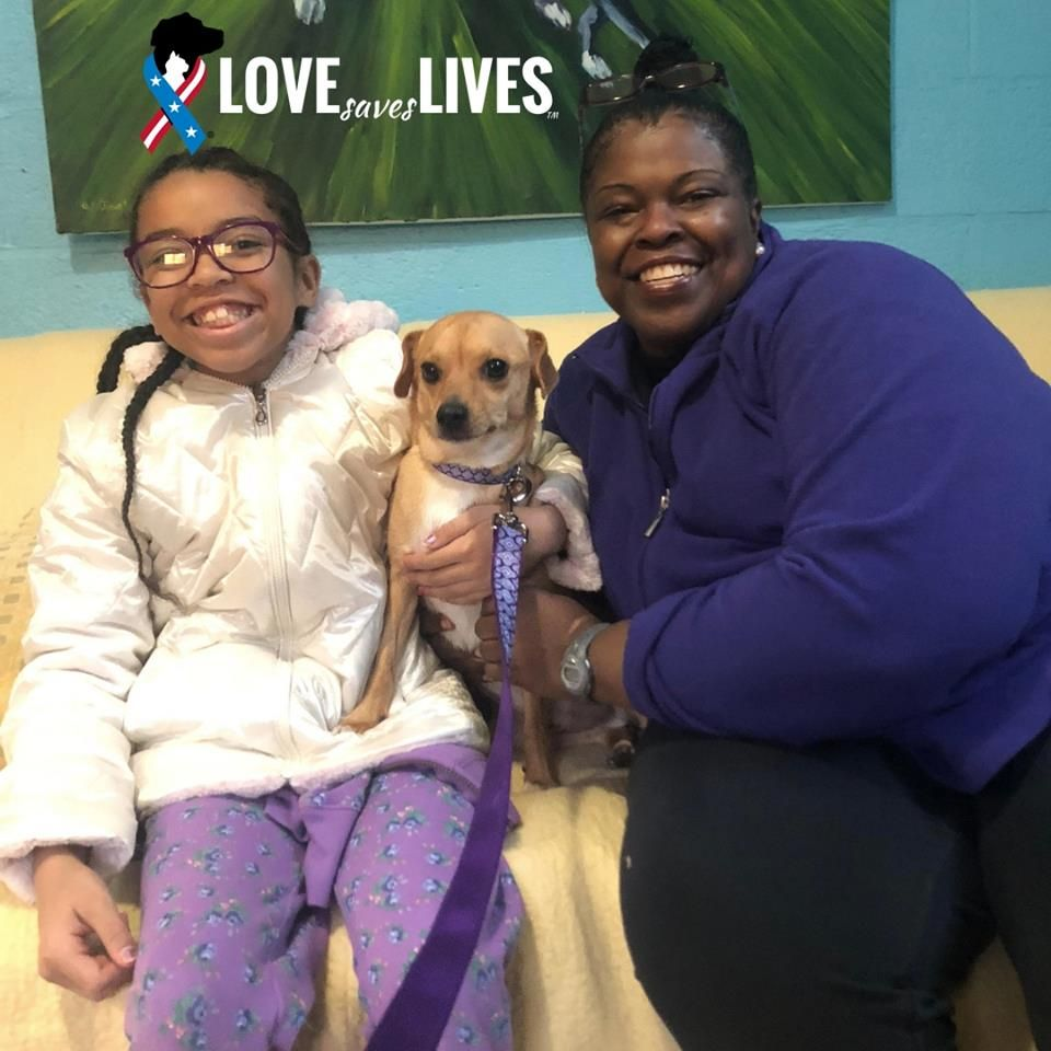 Cynthia Retired Navy Is All Smiles At Having Found Her New Best Friend A Mixed Breed She S Named Copper The Baltimore Huma Pets Animal Companions Adoption