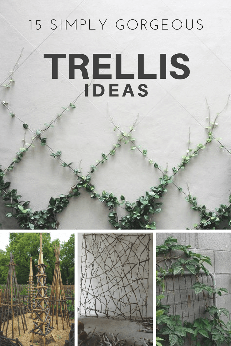 15 Simply Gorgeous Trellis Ideas Maximize space Gardens and Spaces