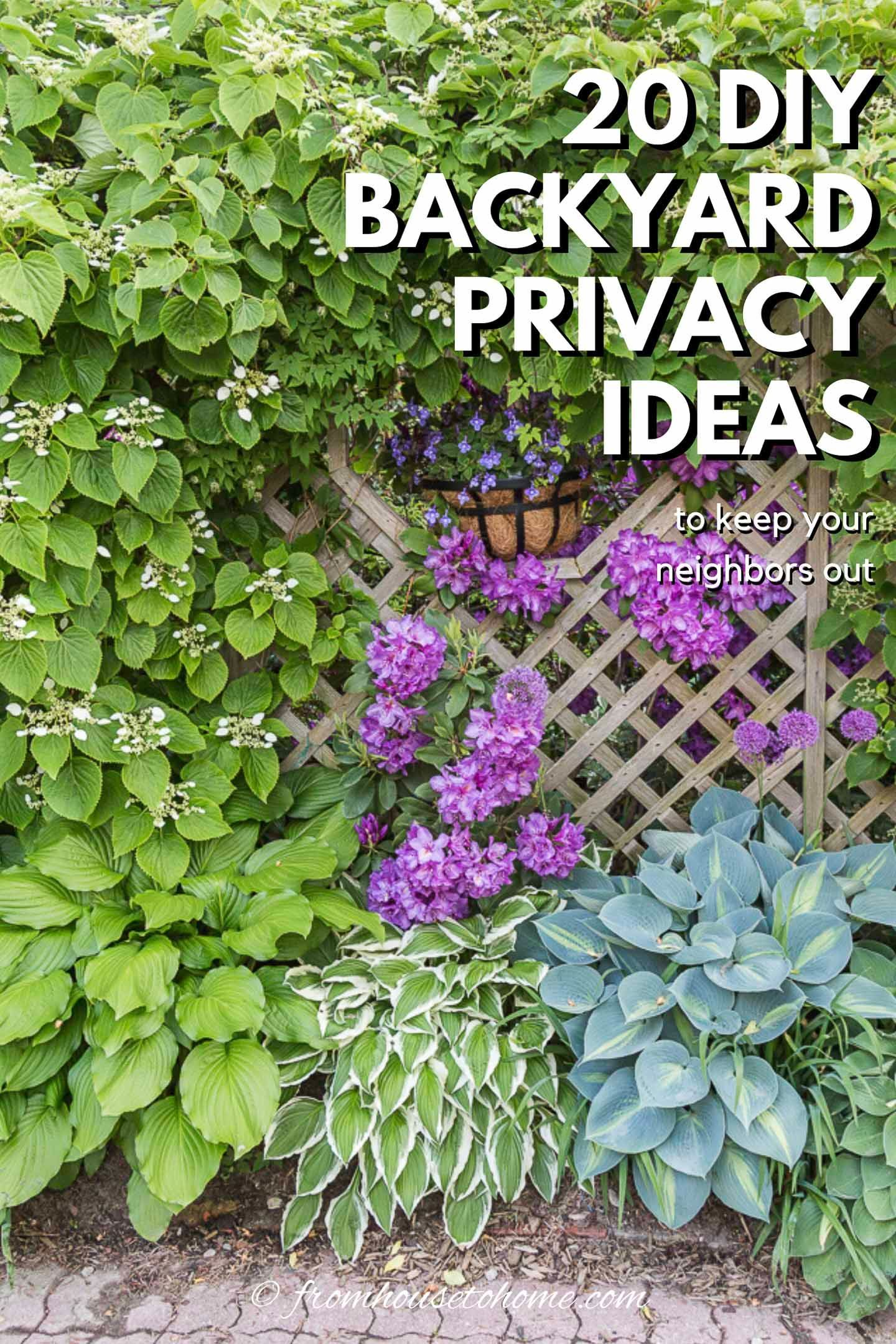 20+ Backyard Privacy Ideas For Screening Neighbors Out is part of Backyard privacy, Privacy landscaping, Outdoor privacy, Privacy screen outdoor, Garden privacy, Backyard - If your neighbors live too close for comfort, try out these backyard privacy ideas for screening the view of your yard, deck or patio