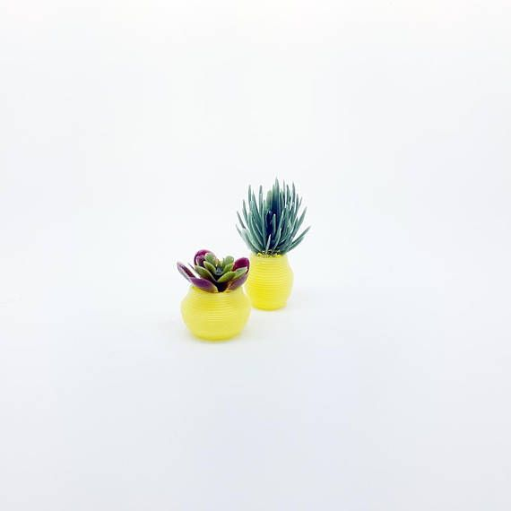 Dollhouse plants  miniature succulents in yellow pot and vase  set     Dollhouse plants  miniature succulents in yellow pot and vase  set of two  mini houseplants  modern planters  decor for modern dollhouse