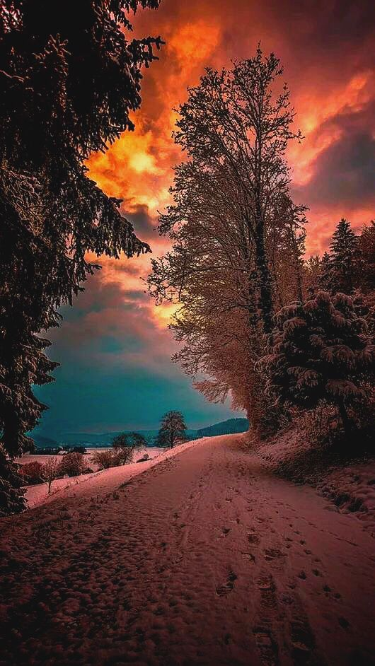 Nice winter  #autumnscenery