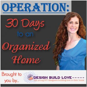 Get Organized in 30 Days!