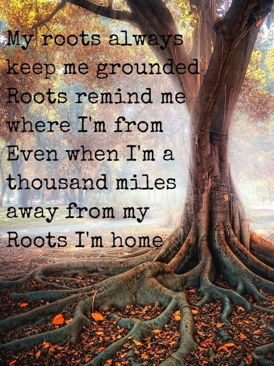 Zac Brown Band Roots Country Lyrics Quotes Country Song Quotes Zac Brown Band Songs