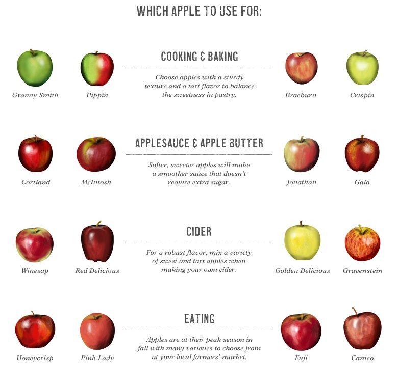 williams sonoma s apple guide best apples for cooking baking rh pinterest ca Baked Apple Recipe Baked Apple Recipe