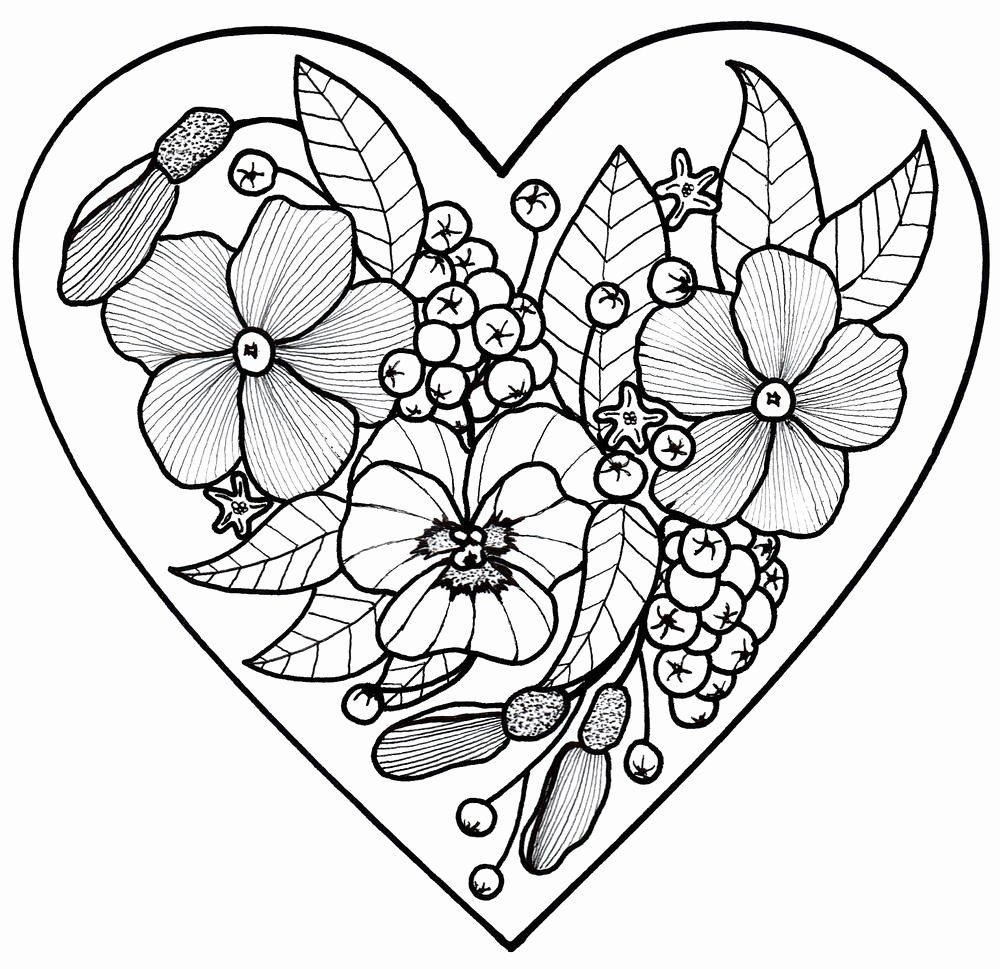Adult coloring sheets flowers lovely adult coloring pages