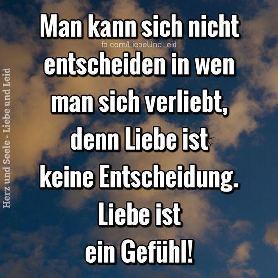 Man kann sich nicht entscheiden in wen… - Rudolf Kaiser - #entscheiden #Kaiser #kann #man #nicht #rudolf #sich #wen