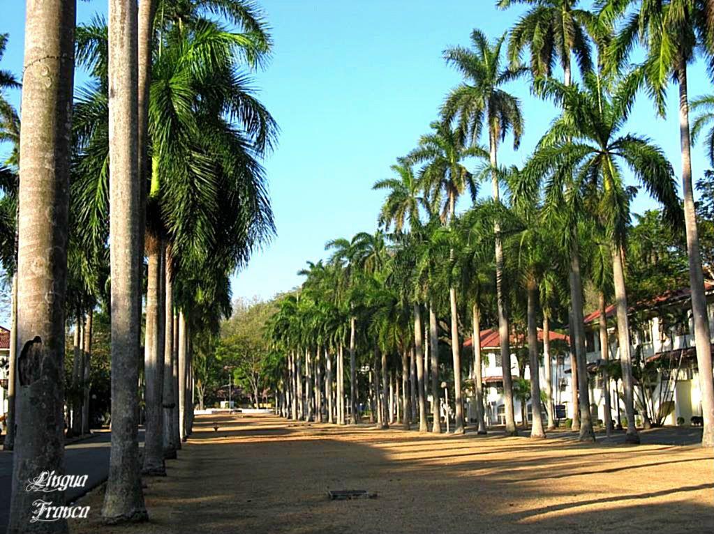 El Prado Boulevard | Panama, Crossroads of the World ...