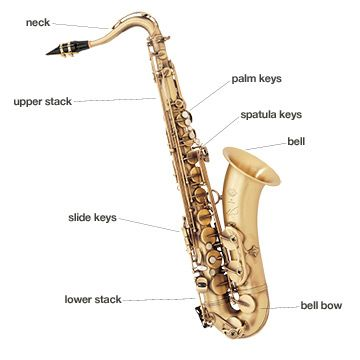 Names For Different Part Of Saxophone Saxaphone Saxophone New Tricks