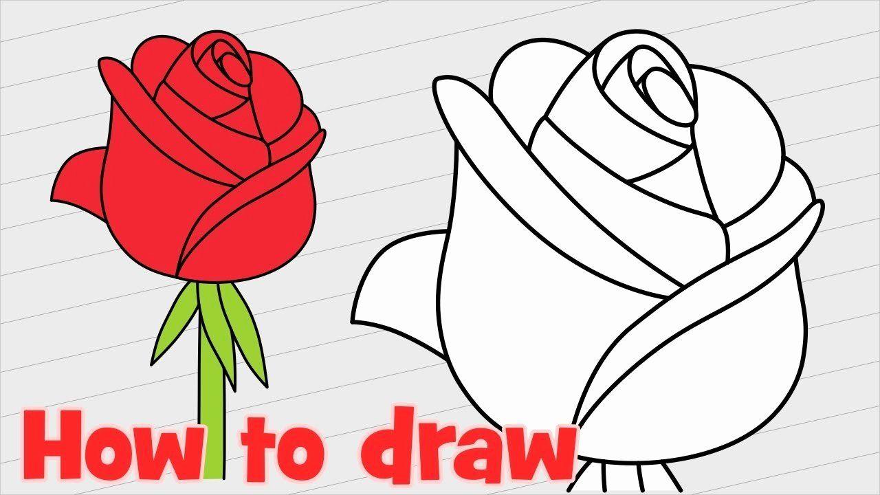 Coloring Flowers Tips Elegant Rose Flower Drawing Step Step At Getdrawings Flower Drawing Realistic Flower Drawing Cute Flower Drawing