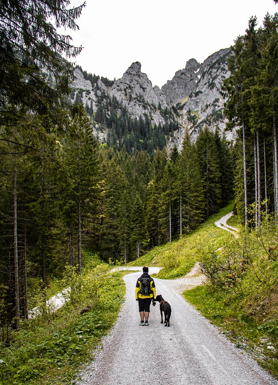 Der Schutzengelweg In Schwangau Die Bergfreaks Urlaub Mit Hund In 2020 Ausflug Reiseziele Wanderung