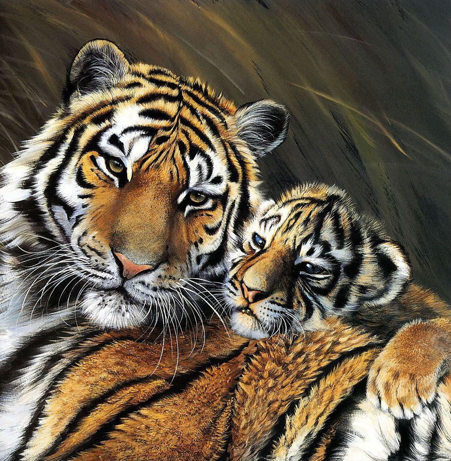 Открытки с изображением тигров, приколы про