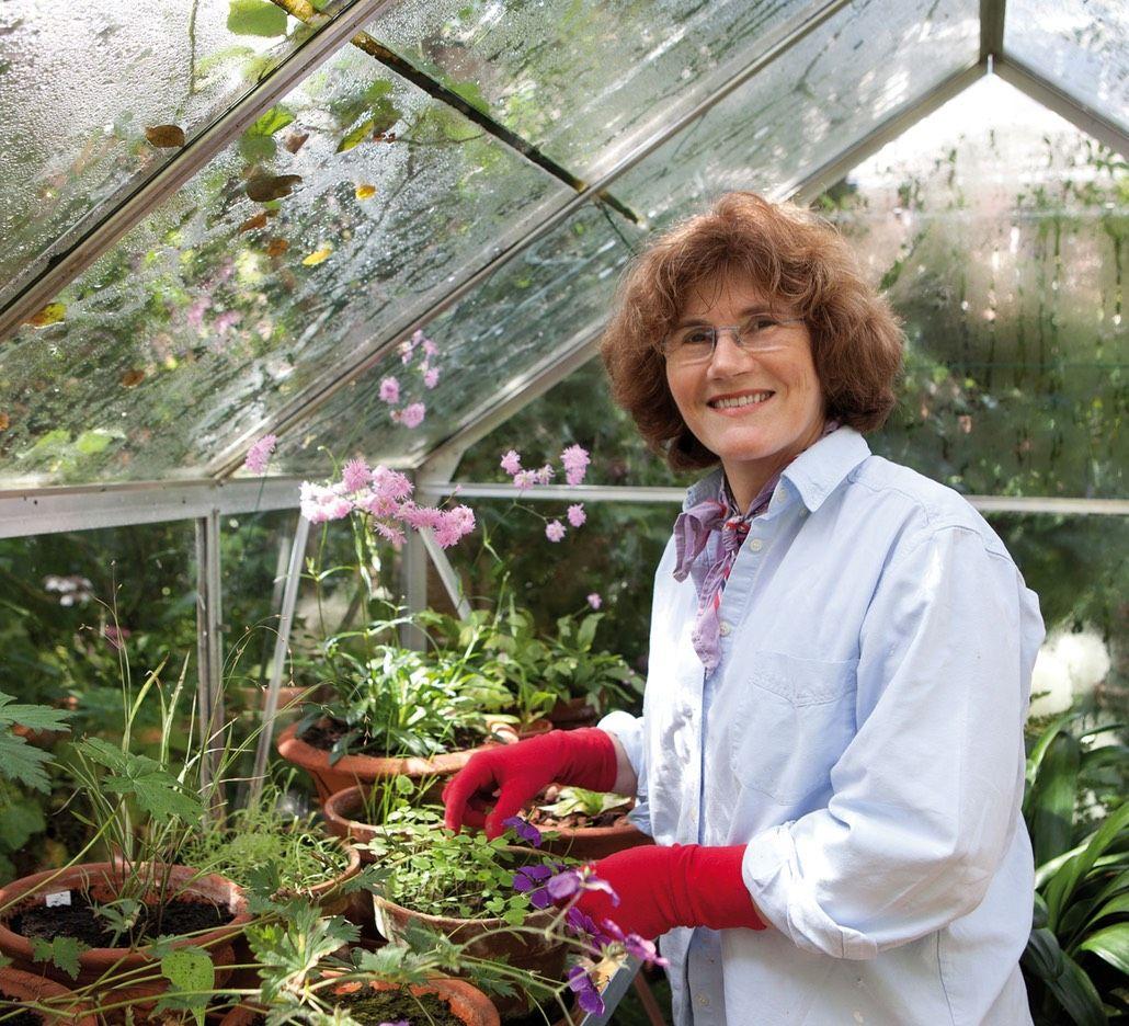 Welkom bij Tuinstudio Rozenhorst voor al uw tuinontwerpen. |
