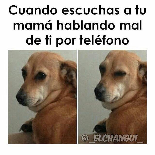 Mama Hablando Por Telefono Memes Memes Graciosos Meme Gracioso