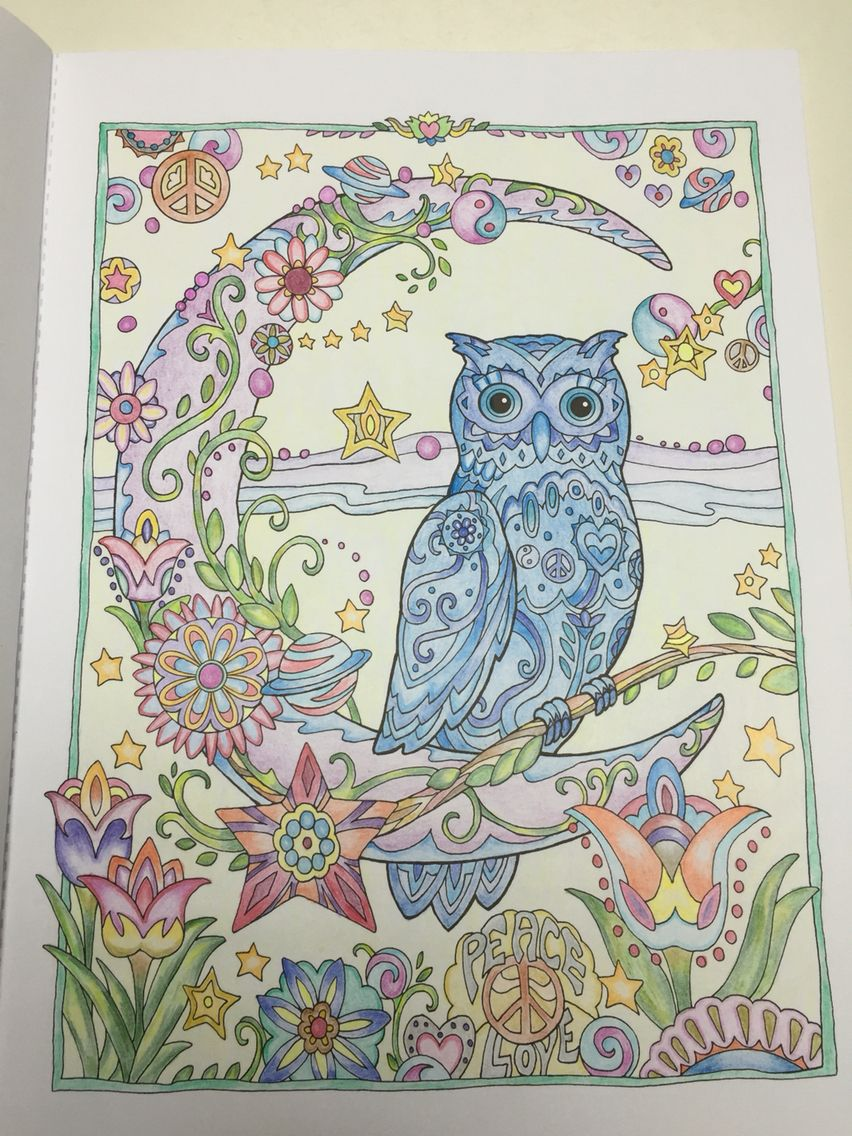 Creative Haven Owls 2 Colouring for Relaxation Owls