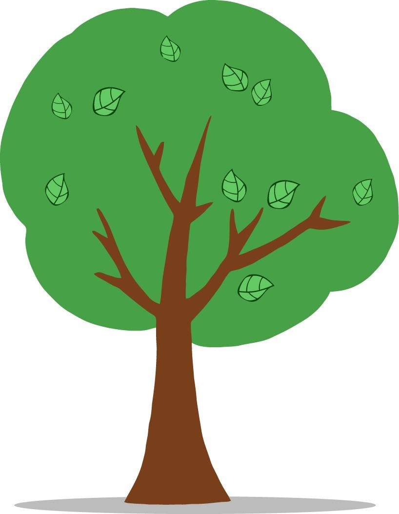 why trees are important Urban trees have equally important impacts on the environment they break up  heat islands, decrease flooding from stormwater runoff, absorb carbon dioxide,.