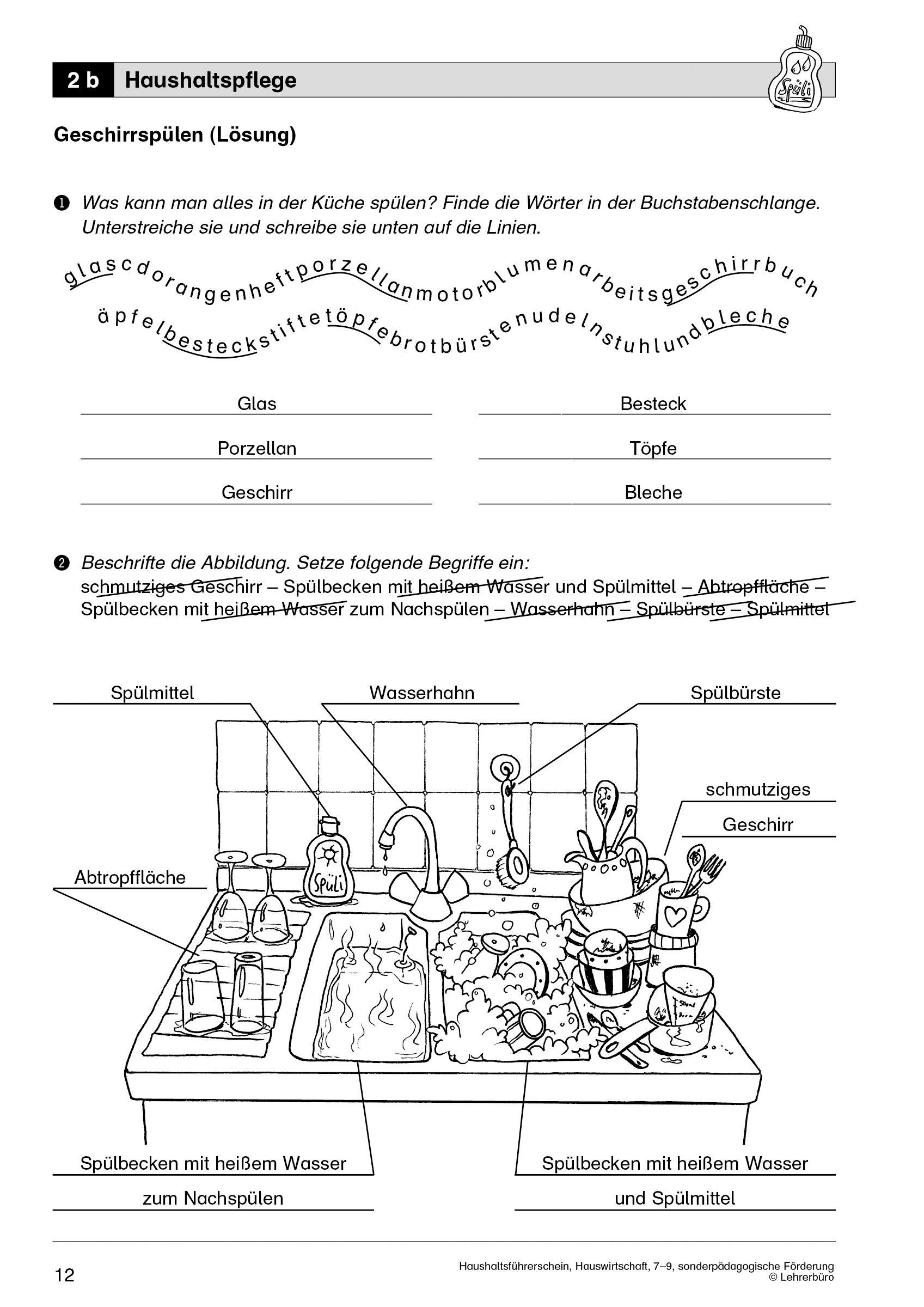 15 Arbeitsblätter Vergleichen Und Kontrastieren
