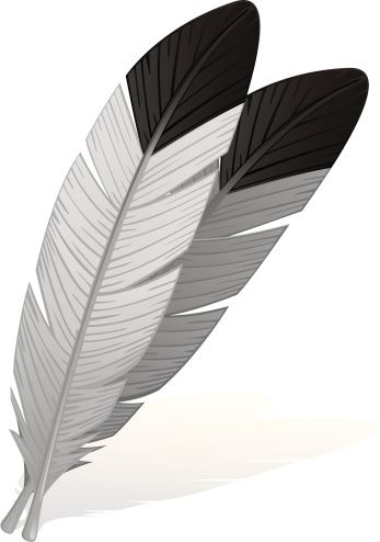 Eagle Feather Clip Art Vector Images Amp Illustrations Istock Eagle Feathers Feather Illustration Feather Clip Art