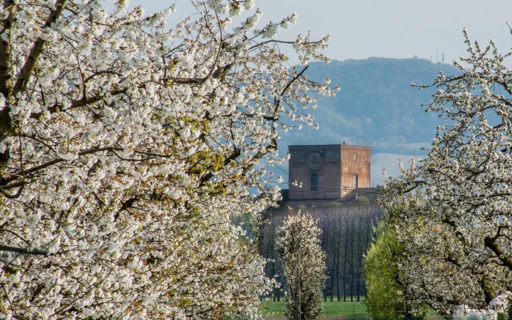 #aroundBologna oggi ci porta a #ZolaPredosa a Palazzo Albergati tra i ciliegi in fiore :-) (foto di @monica_blog)