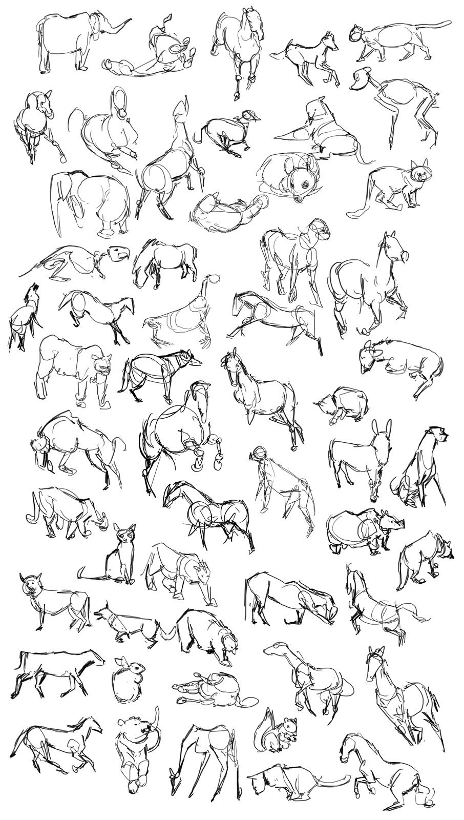 Animal gesture drawings || CHARACTER DESIGN REFERENCES | Art... <3 ...