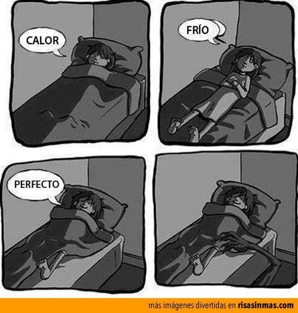 El Peligro De Dormir Con Una Pierna Fuera Funny Funny Pictures Funny Memes