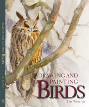 Drawing and Painting Birds-Book