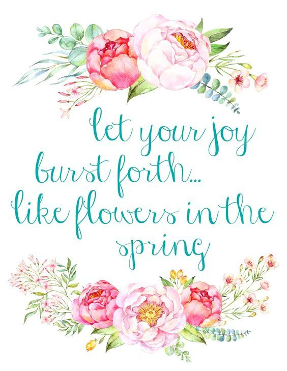 let your joy burst forth like flowers in the spring on sweet dreams for your home plants decoration precautions and options id=23794