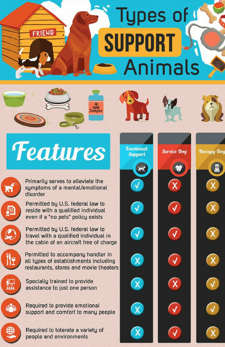 Types of support animals pets infographic animals dogs cats types of support animals pets infographic animals dogs cats 1betcityfo Gallery