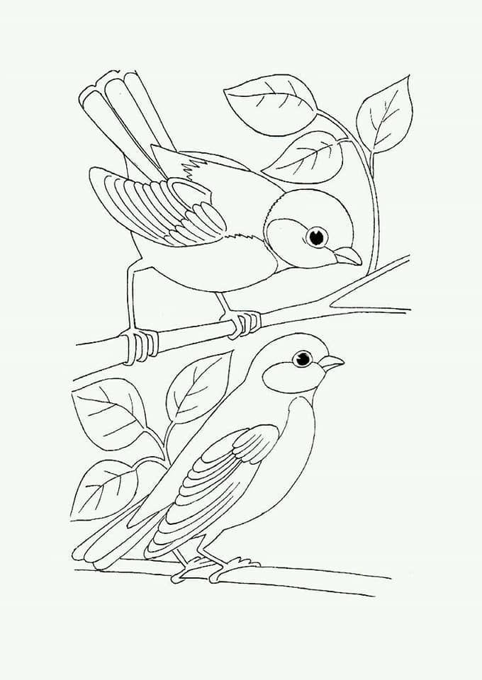 Pin Von Cristina Moral Auf Coloriages Pour Adultes Et Enfants Malvorlagen Tiere Ausmalbilder Vogel Muster Malvorlagen