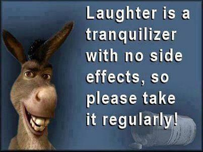 Laughter not just makes us feel better in the moment, but delivers long-term health benefits as well. Laughter releases endorphins - our 'feel good' chemicals. Laughter therapy isn't complicated – just laugh away your blues and you'll be fine.